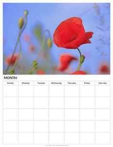 blank-calendar-pages-to-print-free-poppy