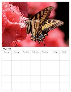 free-blank-monthly-calendars-to-print-butterfly-flower