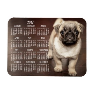 calendar magnet french bulldog 2017