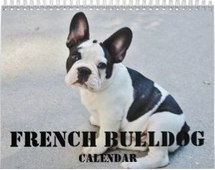 french bulldog calendar custom