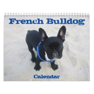 french bulldog wall calendar 2017