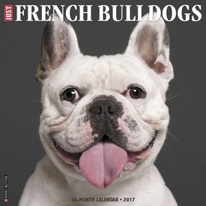 frenchie calendar 2017