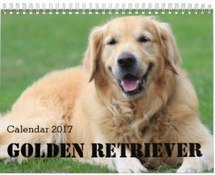 golden retriever calendar 2017 personalize it