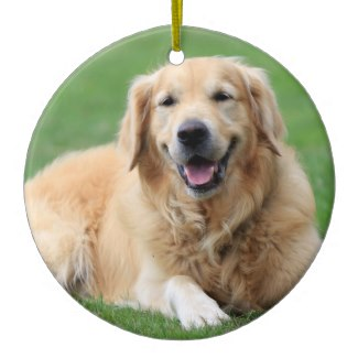 golden retriever christmas tree ornament premium
