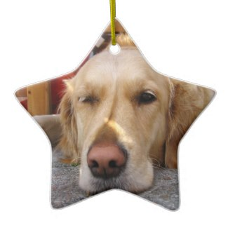 golden retriever ornament for christmas tree