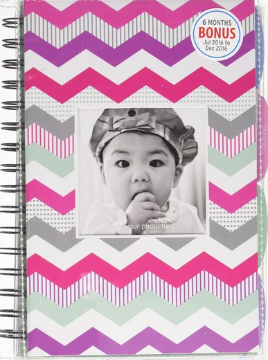 life planners for moms 2017