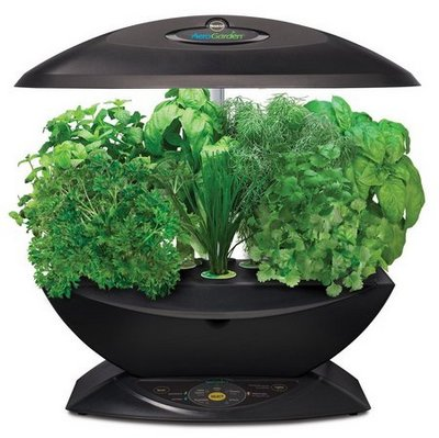 where to buy aerogarden