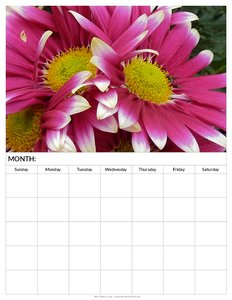 2013-blank-monthly-calendar-printable