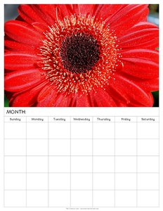 free-blank-monthly-calendars-to-print-with-flower