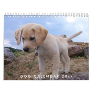 dog calendar 2018 with your photos