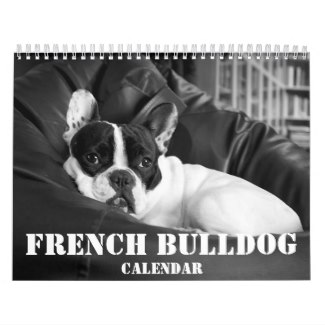 french bulldog calendar black and white 2017