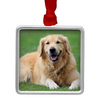 golden retriever christmas ornament custom
