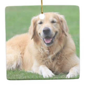 high end golden retriever christmas ornament
