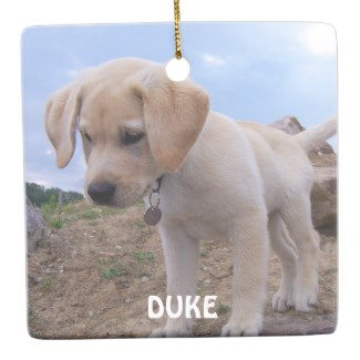 christmas ornaments dog photo customizable